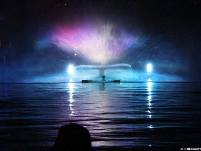Bassin nautique, Mysticète-14