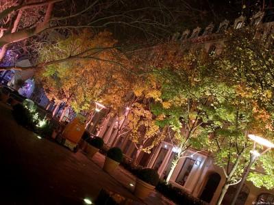 CCI-Illuminations_2013-3