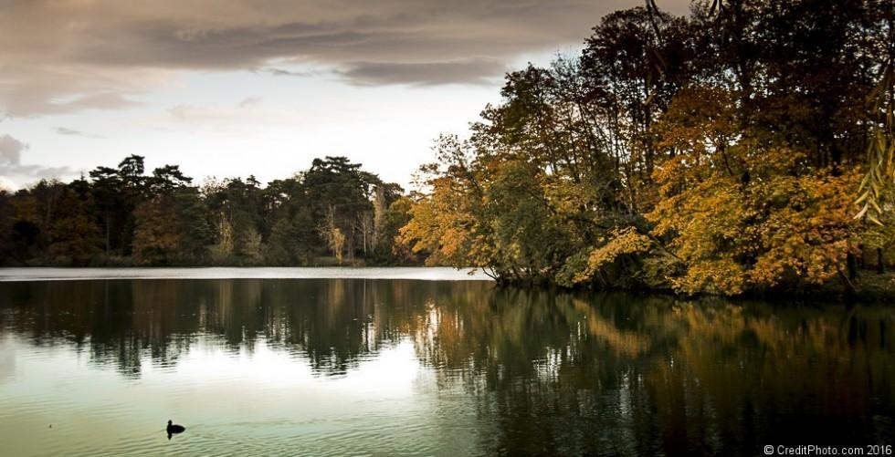 Les couleurs d'automnes s'affichent au Parc de la Tête d'or